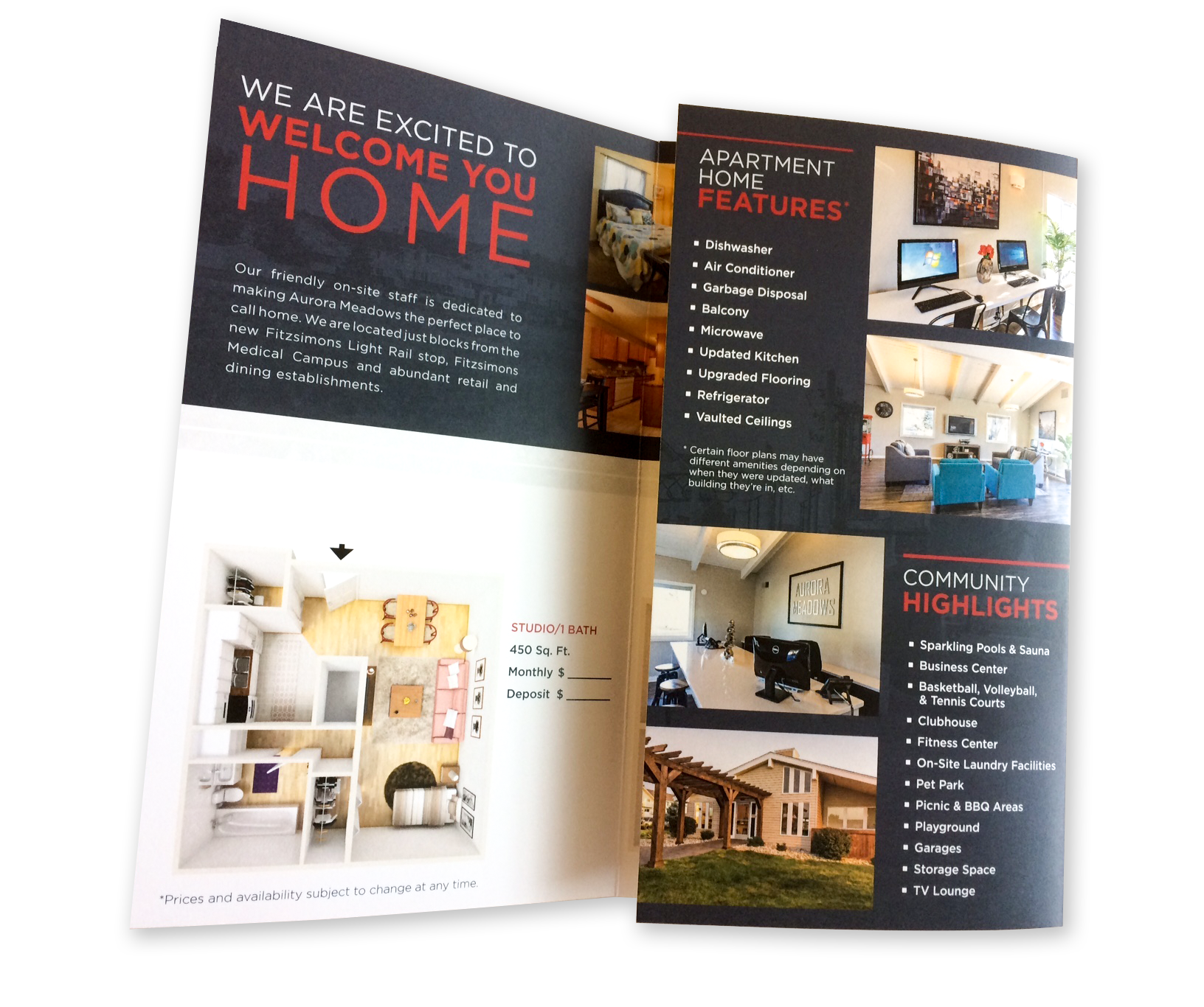 A large trifold brochure